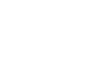 Briefing Video